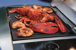 lobster shrimp horiz